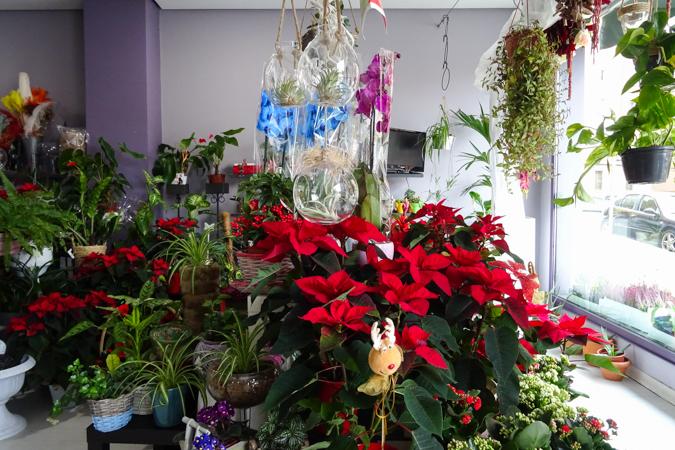 Interior Ijar Arte Floral