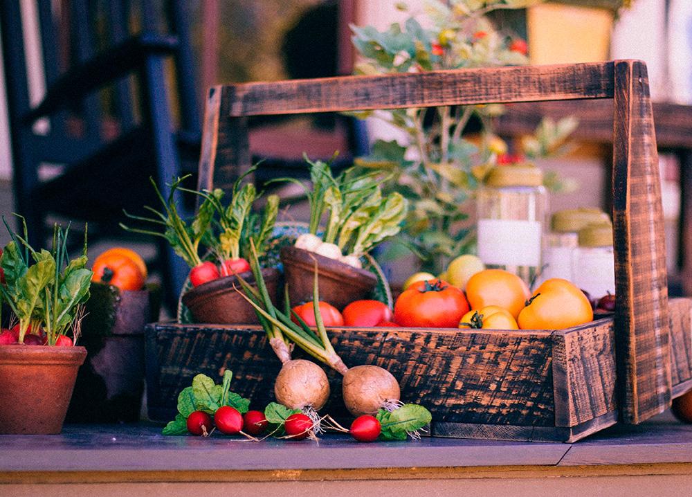 La alimentación sana y la provincia de León